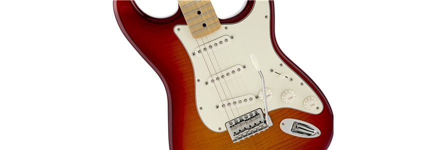 Standard Stratocaster® Plus Top - Aged Cherry Burst