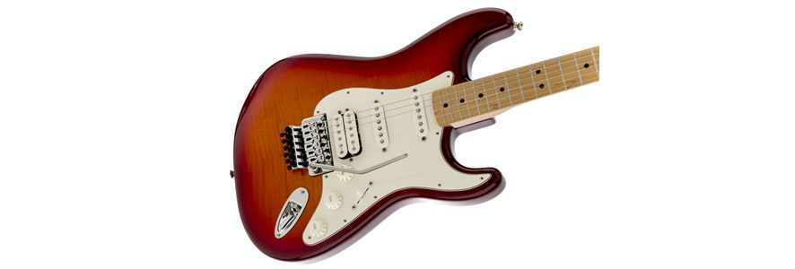 Standard Stratocaster® Plus Top with Floyd Rose® Tremolo - Aged Cherry Burst