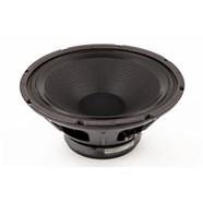 """12"""", 8 ohm, 100 watt, Standard Speaker -"""