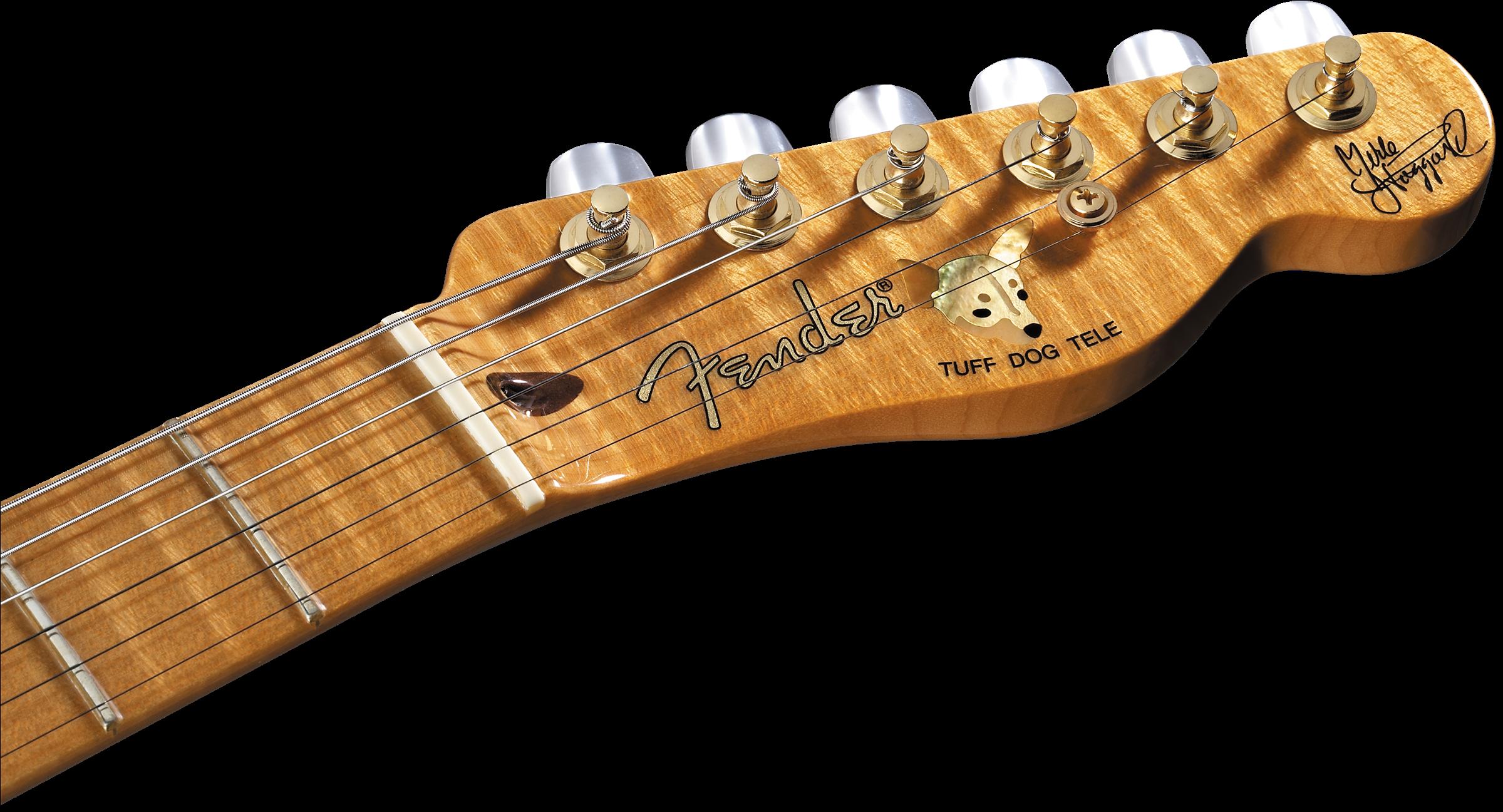 Merle Haggard Signature Telecaster Artist Series Fender Custom Sale On Texas Special Pickups Wiring