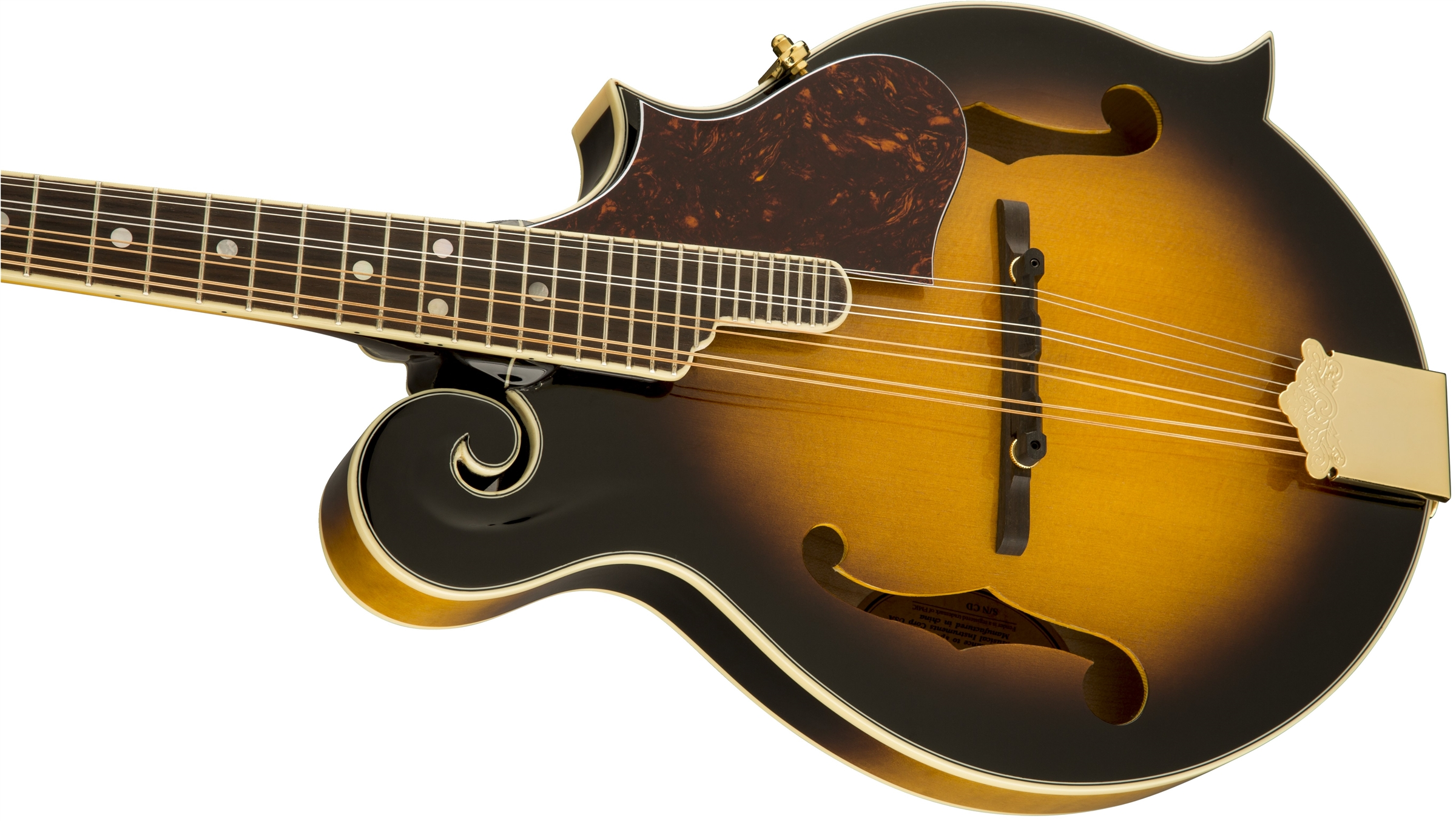 how to turn your mandolin
