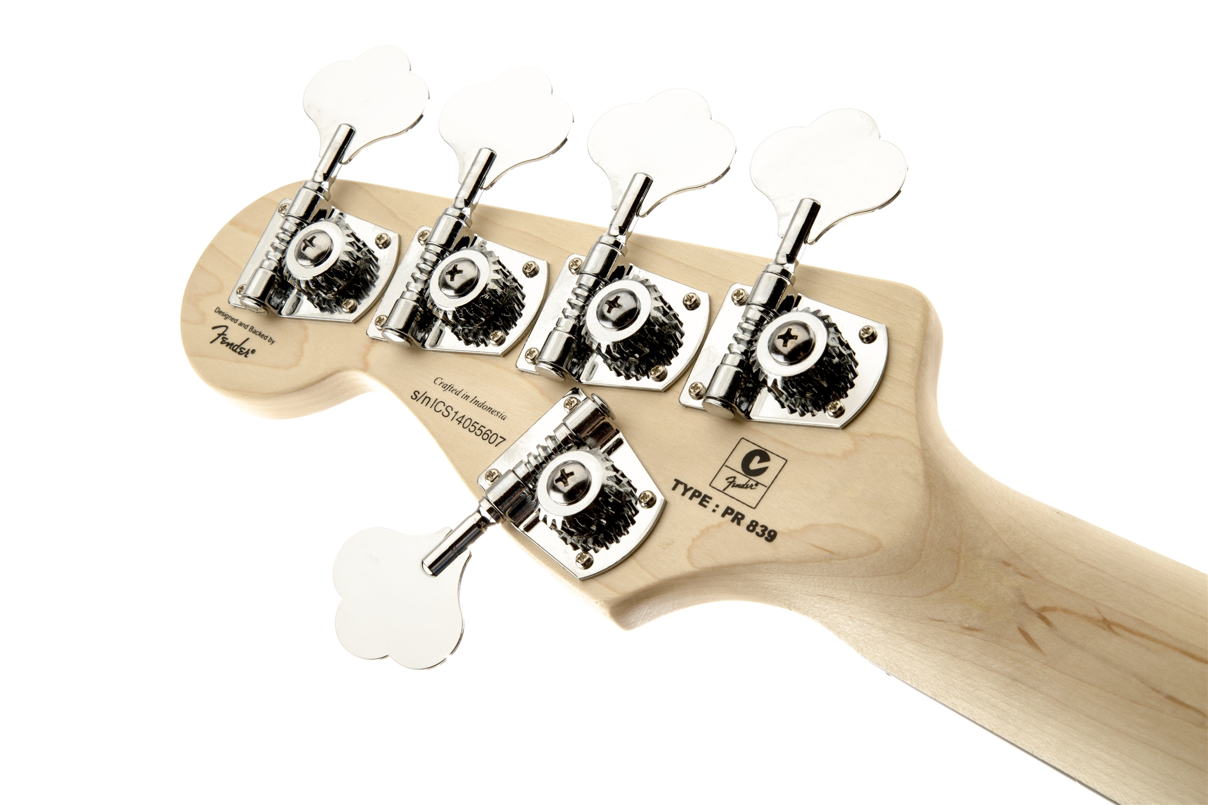 Fender P Bass Wiring Diagram - Solidfonts