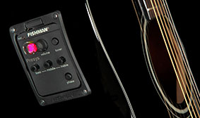Fishman® preamp with built-in tuner