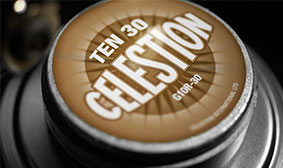 CELESTION TEN 30 SPEAKER