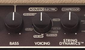 Voicing Control