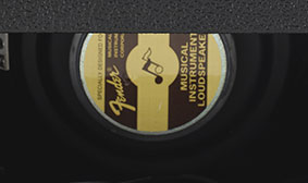 "10"" Fender Special Design Speaker"
