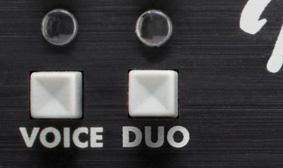 Fender Duo