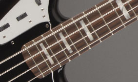Block Fingerboard Inlays