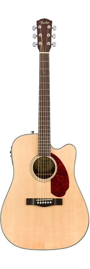Acoustic Guitars Fender