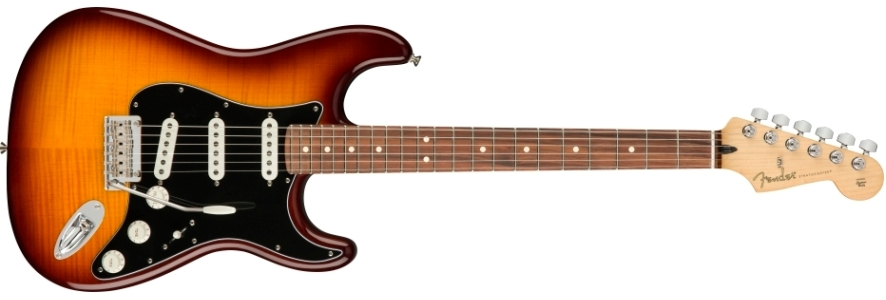Player Stratocaster® Plus Top view 1.0