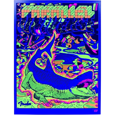 Limited-Edition Ames Bros. Parallel Universe Strat-Tele Hybrid Poster  -