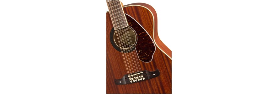 Tim Armstrong Hellcat-12 String -