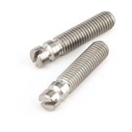 Bridge Pivot Screws (2) -