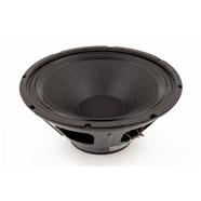 """12"""", 4 ohm, 100 watt, Standard Speaker -"""