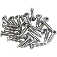 Pickguard - Control Plate Mounting Screws (24) - Chrome