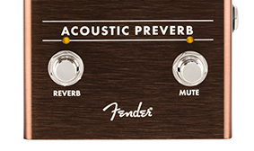 ACOUSTIC-READY REVERB