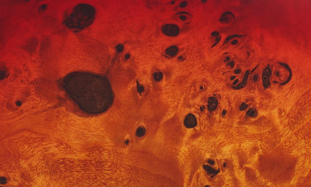 Multi-Laminate Poplar Burl/Walnut/Maple/Walnut/Mahogany Body