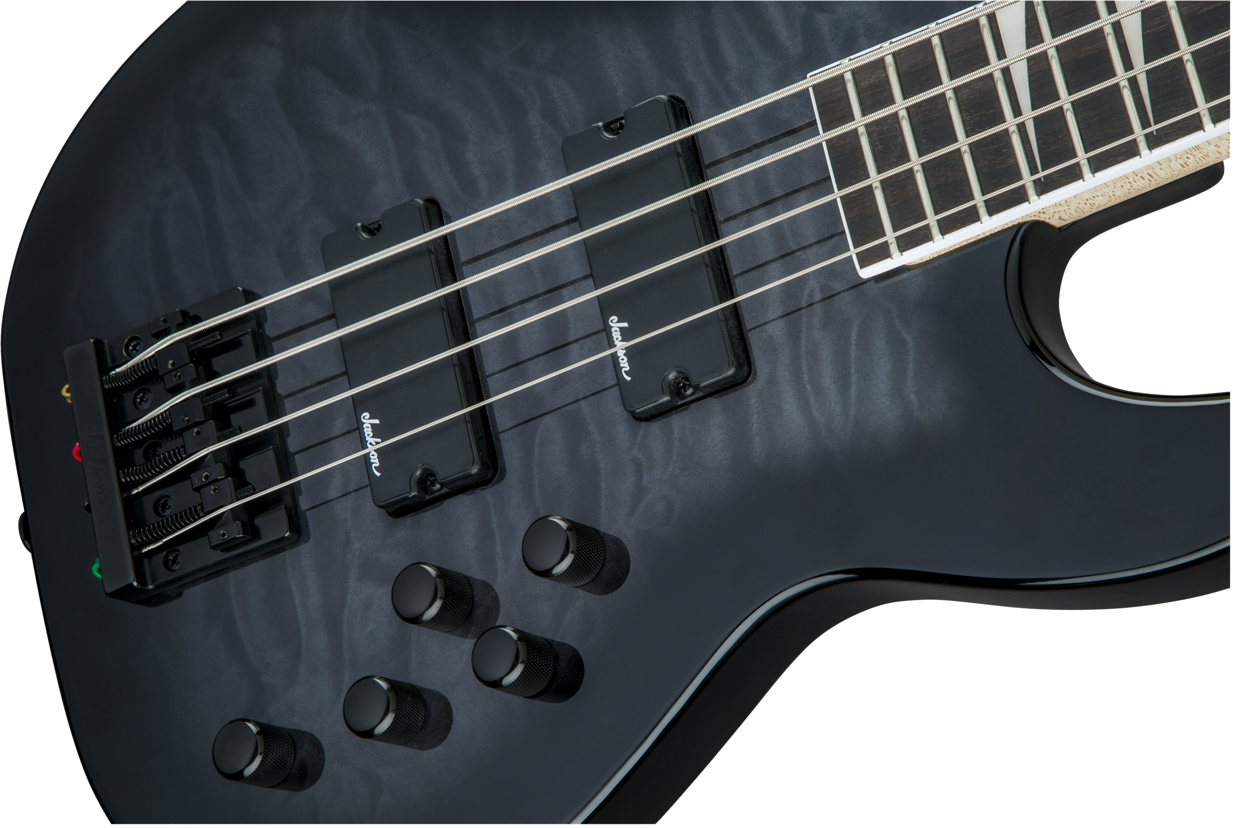 Concert Bass :: JS Series Concert™ Bass JS3Q, Rosewood Fingerboard ...