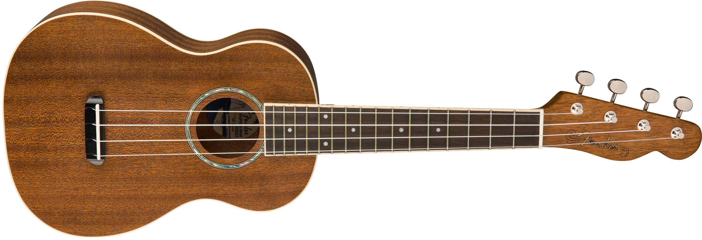 zuma concert ukulele ukuleles