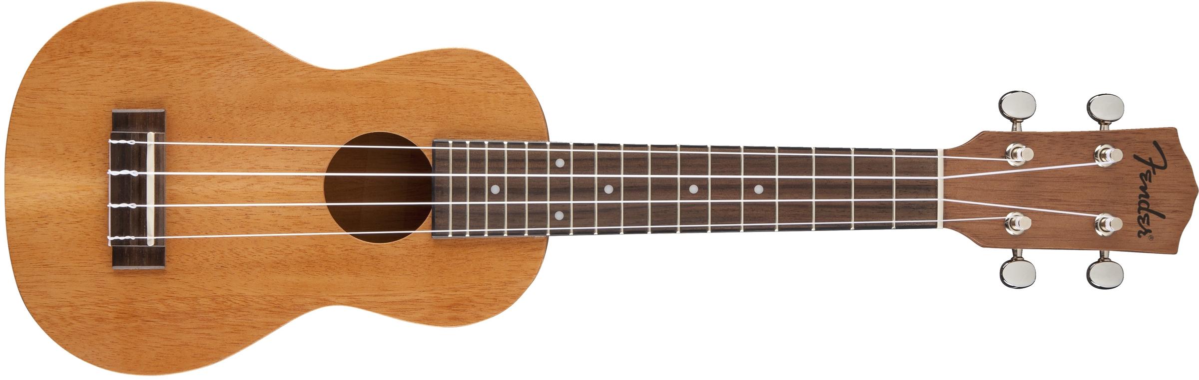 how to play the plage ukulele