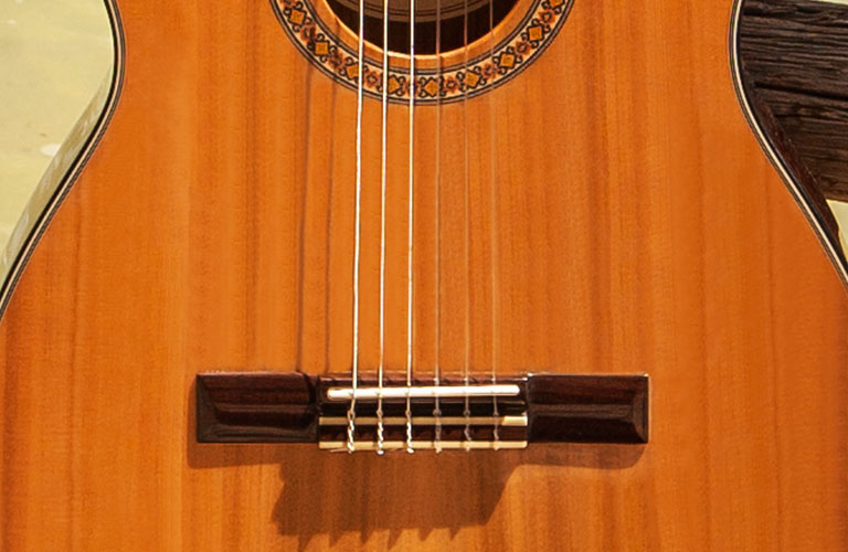 Lifestyle Browse Nylon String