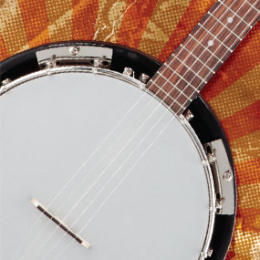 FB-300 Banjo Pack