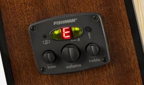 FISHMAN® PREAMP UND TUNER