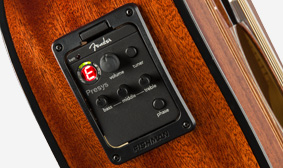 FISHMAN® PREAMP AND TUNER