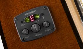 FISHMAN® ELECTRONICS