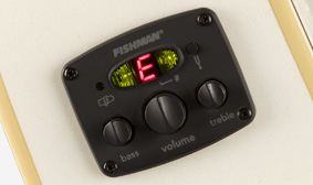 Fishman Preamp and Tuner
