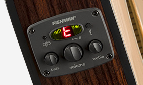 Fishman Classic Design Preamp and Tuner