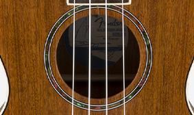 Abalone Rosette
