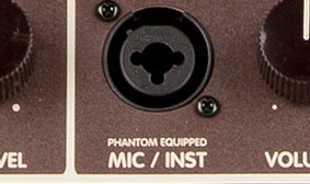 "XLR and ¼"" inputs"