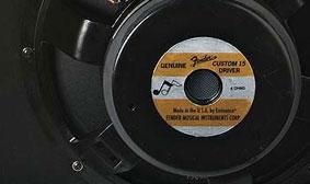 """15"""" Eminence® special-designed speaker"""