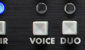 Voice Button