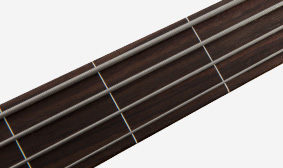 FRETLESS FINGERBOARD