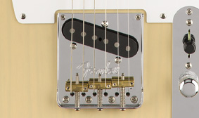 AMERICAN PROFESSIONAL TELE BRIDGE